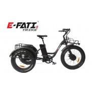E-FATI 4