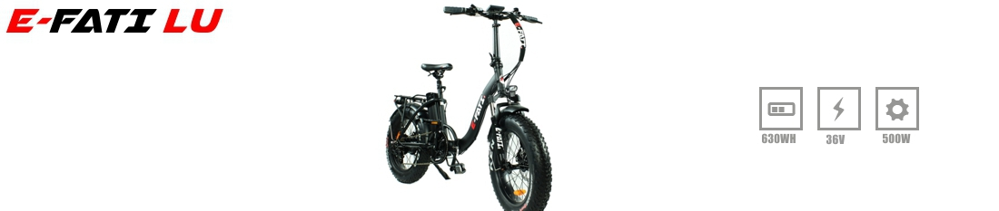 e-fati electric fat bike